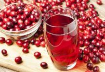 Mirtillo rosso americano cranberry