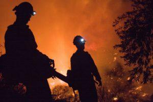 Incendio boschivo: Pompieri