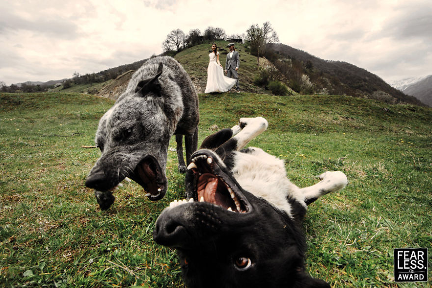 best-wedding-photos-2017-fearless-awards-296-59e45d32e4371__880