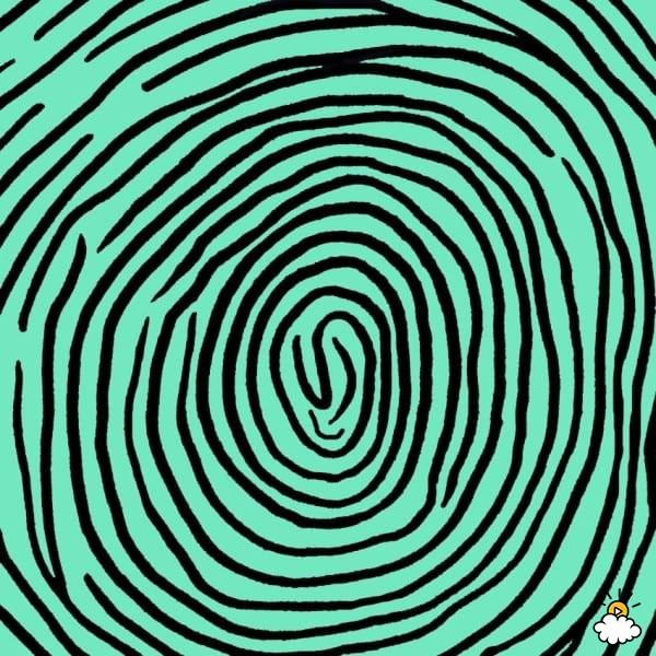 impronta digitale: schema a spirale