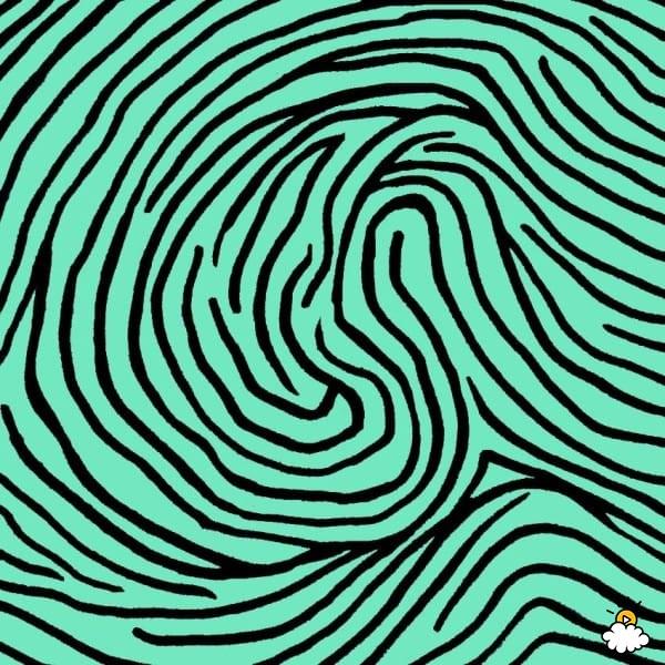 Impronta digitale: il doppio circuito