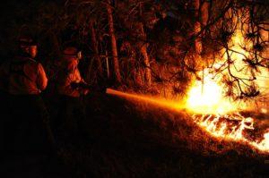 Incendio boschivo: lottare col fuoco