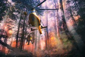Incendio boschivo: Pompieri e aerei