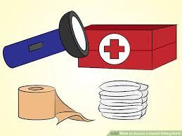 corso di sopravvivenza: acquistare sufficienti viveri di ogni genere