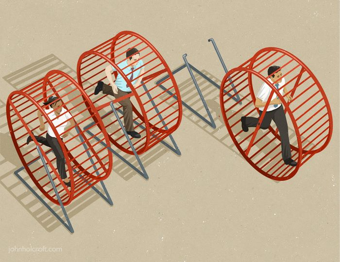 problemi sociali attuali: criceti a lavoro